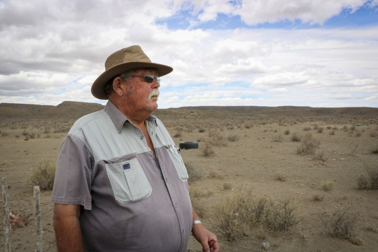 Wynand Vivier gazes out over his farm outside Beaufort West. Picture: Aletta Harrison/News24